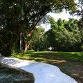 Kleines Paradies mit mehreren Brunnenwasser-Pools.