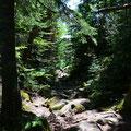 Trail zum Agawa Rock
