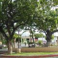 Noch ein Ort der Ruhe, der El Calvario