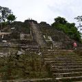 El Castillo oder der Hight-Tempel mit 33 m der Höchste in Lamanai.
