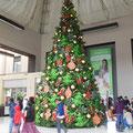 schon am 01.11. riesige Weihnachtsbäume und