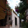In einem kleinen aber feinen und versteckte Cafe in einer Seitestraße von San Miguel