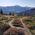 Tour Richtung Segneshütte