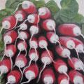 Des Radis / Öl auf Leinwand 30 x 30 cm 2015 (verkauft)