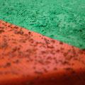 Strukturpaste mit Farbe Grün & Modelliergel Sandstruktur mit Farbe Rot