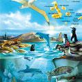 Edition : Illustration mixte / Galápagos • © Christophe HOULES, illustrateur