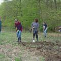 Vorbereitung des Bodens für die Aussaat der Saatmischung für den blühenden Schmetterlings- und Wielbienensaum.