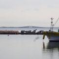 857 松川浦漁港から遠方の大洲の復旧状況を望む