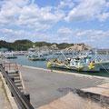 0219 いわき市久ノ浜漁港の復旧状況②