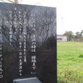 198 旧・大蛇小学校の石碑