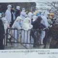 472 避難中のマルハニチロの社員(日和山に掲示された写真)