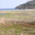 0048「住宅地域から沿岸部や農地を見る」