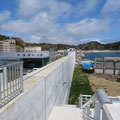 328 鍬ケ崎の防潮壁