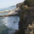 野田玉川駅裏の断崖から玉川漁港を望む、断崖上まで津波が遡上。