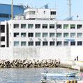 446 釜石港湾合同庁舎と防潮壁