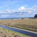 0519 田野畑・明戸の河口
