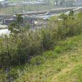 801 天神岬公園からの遠景
