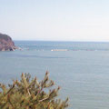 釜石の大水深防波堤の被災状況