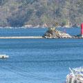 391 安渡地区の防潮堤から(蓬莱島)