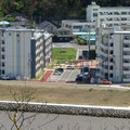 810 旧北上川左岸の堤防(後方は湊小学校)