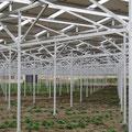 963 農地を兼ねた太陽光発電