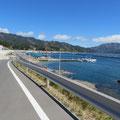 353 山田町大沢地区の沿岸部を囲む防潮壁