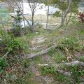 2648 私設津波避難場所「佐藤山」の第4の登り道(全部で4つの緩やかな登り道があった)