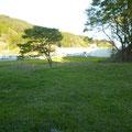 241 合足漁港の防潮堤