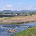 0458 井出川下流の汚染土仮置場