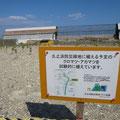 3303 久ノ浜地区 防災緑地工事