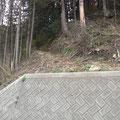 4134 裏山にある稲荷神社の参道