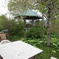 2642 私設津波避難場所「佐藤山」 普段は東屋と喫茶テラス