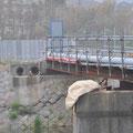 0356 北迫川。橋梁とともに流された水管橋の仮復旧