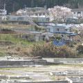 津軽石・高台にある赤前小学校と仮設住宅