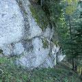 Nagelfluhmauer unterhalb der Einegund Alpe