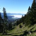 Blick ins Lecknertal (Südseite) bis zum Säntis in der Schweiz