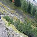 Abstieg von der Wolfratshauser Hütte zur Gartner Alm