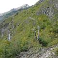 Abstieg ins Oytal