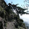 Am Unteren Vellauer Felsenweg