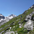 Rückblick zu Hohe Weiße Grafspitze und Labkogel