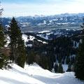 Blick ins Tal und zu den Allgäuer Alpen