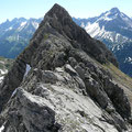 Unterwegs am Grat,zum Wildengundkopf