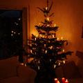 Der große Weihnachtsbaum bei der großen Schwester.