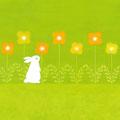 うさぎの花畑