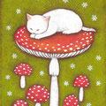 白猫とベニテングダケ