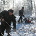 Mahd von Röhricht im Winter