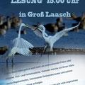 Poster, Kultur gut Stärken, Lesung mit Ralf Ottmann - DER Lewitz-Ranger, Foto Andrea Weinke