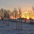 Winteranfang -  Foto Andrea Weinke, Gross Laasch Flexibel e.V.