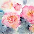 roses XX 2016 (22) / Watercolour 25x32cm CP  © janinaB. 2016