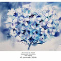Blumen II 2016 / Aquarell 24x34m auf Vang © janinaB. 2016